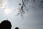 Пасхальное чудо-дерево_32