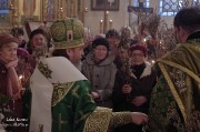В канун Вербного воскресенья епископ Нарвский и Причудский Лазарь возглавил Всенощное бдение в кафедральном Нарвском Воскресенском соборе _37